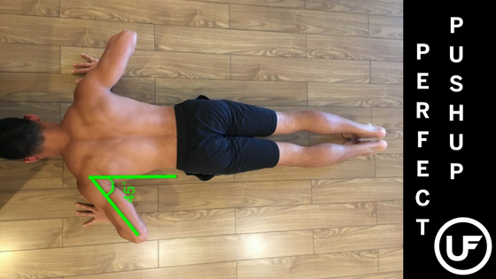 guide to the perfect pushup union fitness